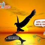 Modrosti Backbird ptiča junaka