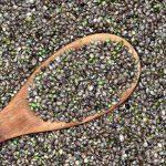 Semena konoplje kot super dodatek